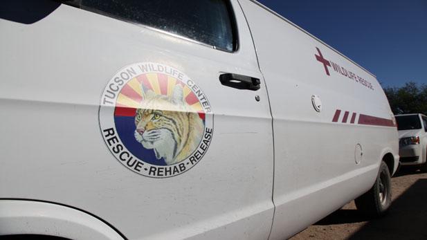 TWC ambulance spot