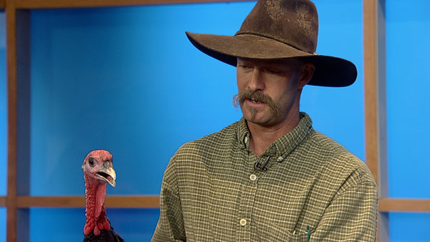 Jim McManus from Walking J Farm and his turkey join Kimberly Craft in the studio.