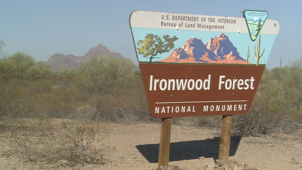 The Ironwood Forest National Monument celebrates its 10th anniversary.