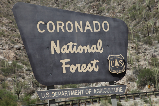 Entrance sign to the Coronado National Forest along Catalina Highway.