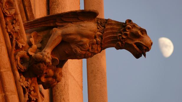nova_cathedrals_gargoyle_spot