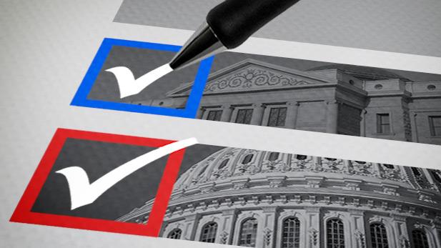 Voting graphic spotlight