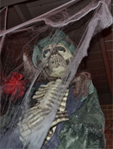 az_spot_skeleton_portrait-160x210
