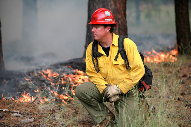 A Kaibab National Forest fire crew member keeps an eye on the 2011 human-caused Beale Fire.