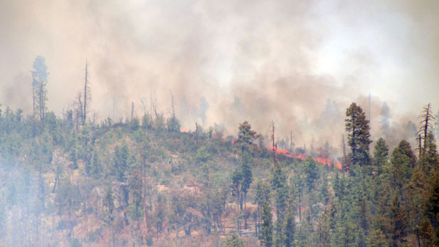 The Bull Flat Fire on Fort Apache Indian Agency land in eastern Arizona.