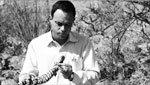 William H. Woodin is the Director Emeritus of Arizona-Sonora Desert Museum. he talks about the the museums 60th year.