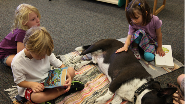 lilly read2dog