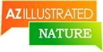 AZ_Ill_nature_thumb