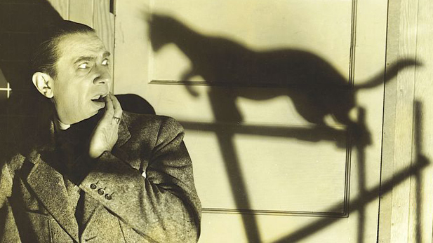 bela lugosi black cat spotlight