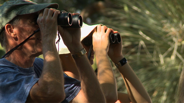 Birdwatchers look at Tucson wildlife from a distance.