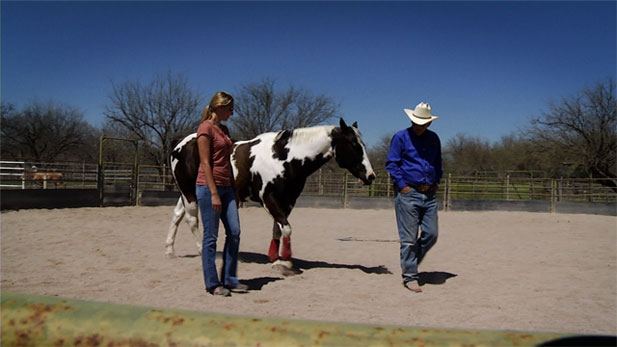 On a ranch in Tucson's east side, medical students are getting a crash course in good communication skills from a team of four-legged teachers.