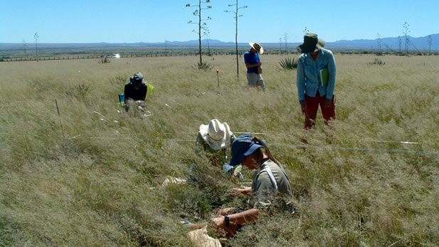 """The Sonoran Institute is a non-profit organization whose mission is to """"inspire and enable community decisions and public policies that respect the land and people of western North America."""""""
