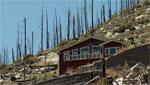 The tenth anniversary of the Aspen Fire on Mt. Lemmon; what does the mountain look like now, how is it recovering, concerns for the future