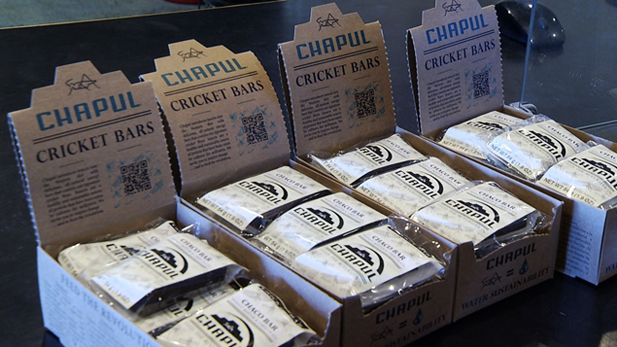 Boxes of Chapul Cricket Bars are displayed on the counter of Rocks n' Ropes.