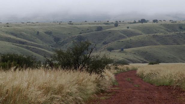 Grasslands SPOT