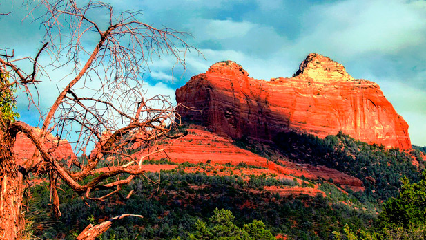 Sedona's red rocks.