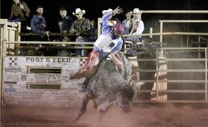 Bull-Rider_Clint_294x180