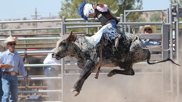 Bull-Rider_SPOTLIGHT