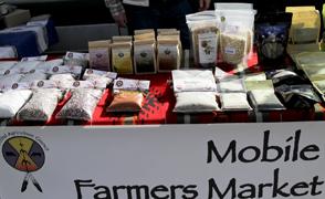 Native Foods Focus Large
