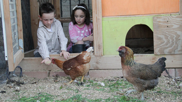 Culliney's children, Reece and Harper, enjoy helping out with the family flock.