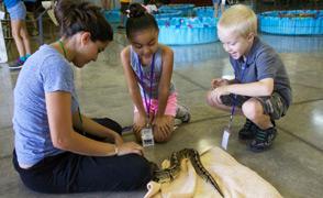 Summer Camp - Kids, Counselor Fcs Lrg