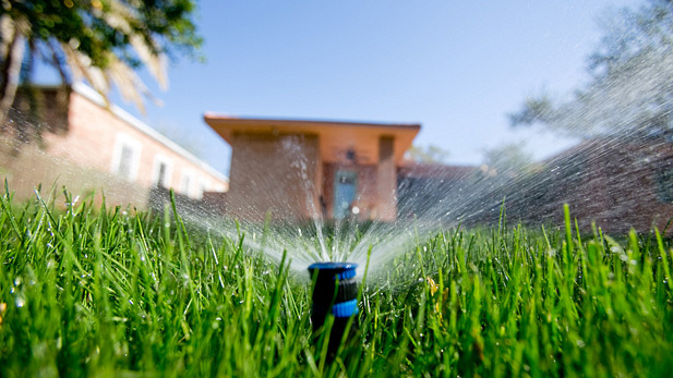 MPR - Sprinklers SPOT