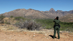 A Border Patrol agent looking over the Arizona desert.