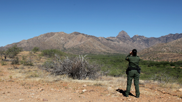 A Border Patrol agent in the Arizona desert looking through binoculars.