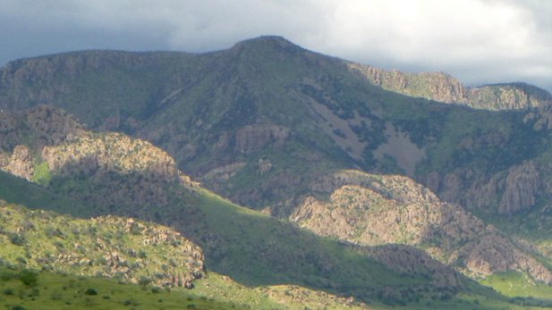 In the summer monsoon, grass carpets the Chiricahua foothills.