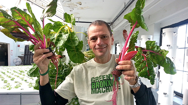 Stephen Ritz, founder of the Green Bronx Machine