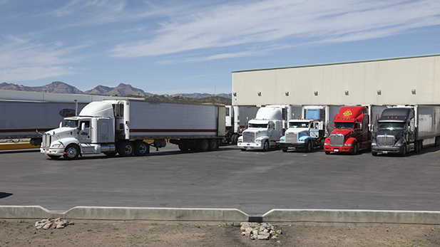 A busy day at produce importer SunFed's warehouse can mean 100 trucks unload fruits and vegetables during business hours.