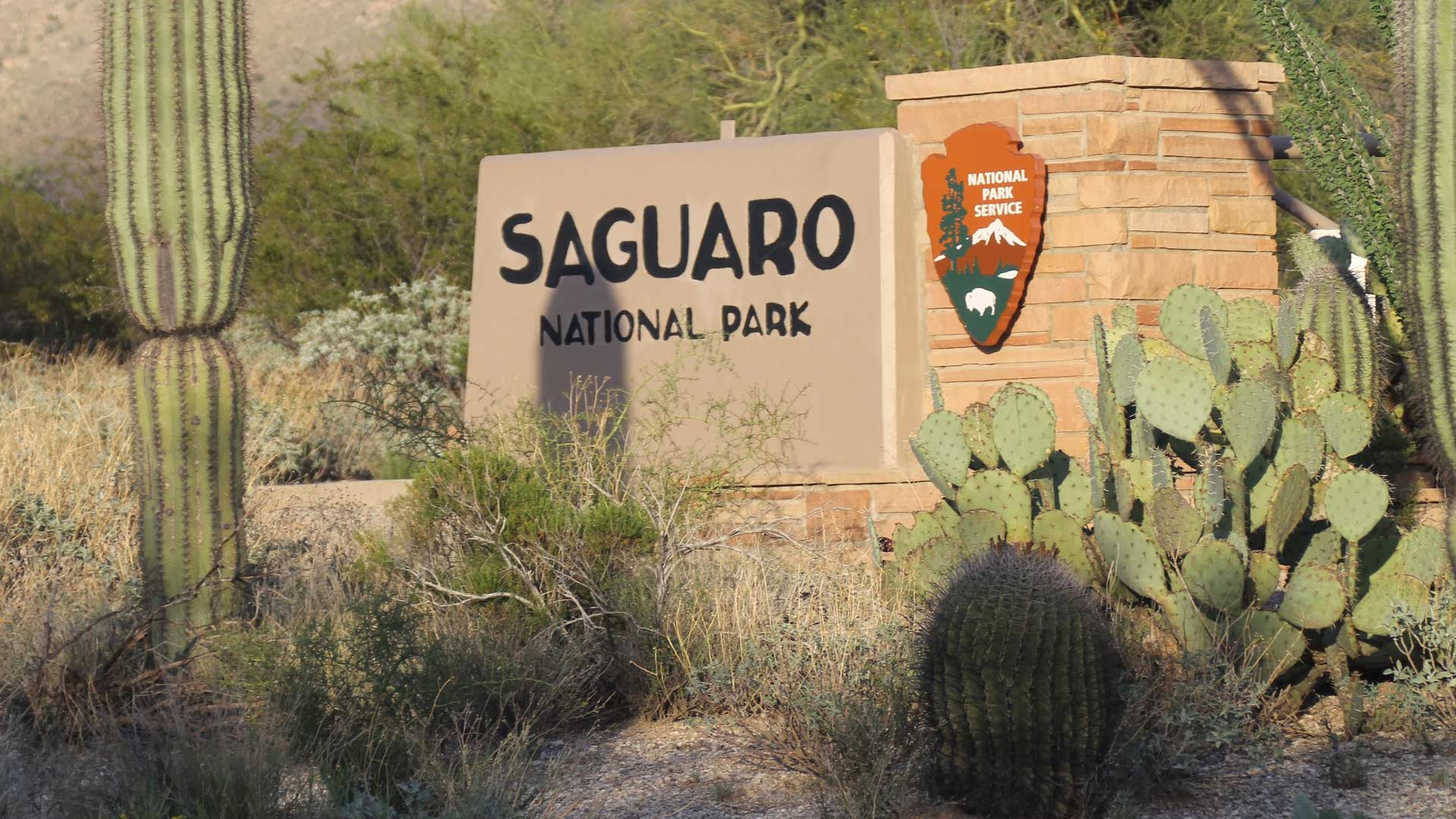 The entrance to Saguaro National Park east.