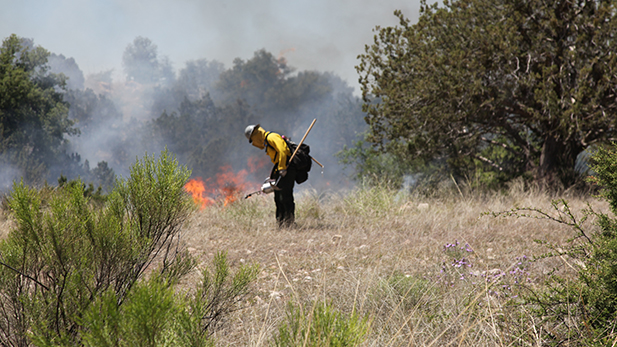 A firefighter uses a drip torch to burn dry grasses in Redington Pass.
