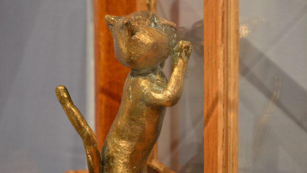 bronze cat profile spotlight
