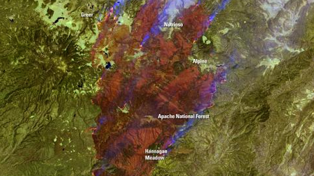 NASA satellite image of the Wallow Fire in Arizona's White Mountains in 2011.