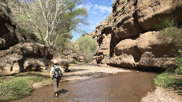 Aravaipa Canyon hiker spotlight