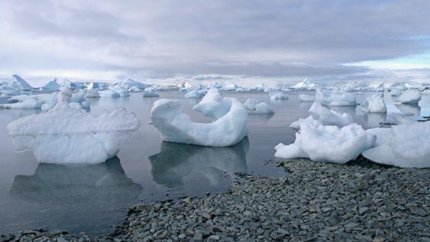 Melting icebergs at Rothera form fantastical shapes.