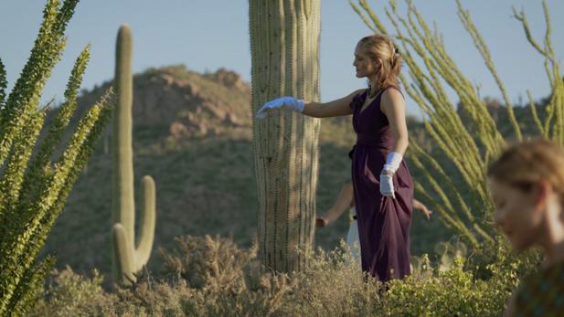 Saguaro Ball