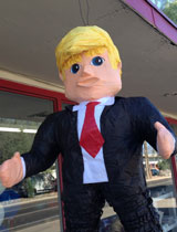 Trump Pinata Portrait