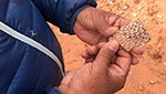 Navajo tribal member Jonah Yellowman picks up a pottery shard from the red dirt near Bears Ears.