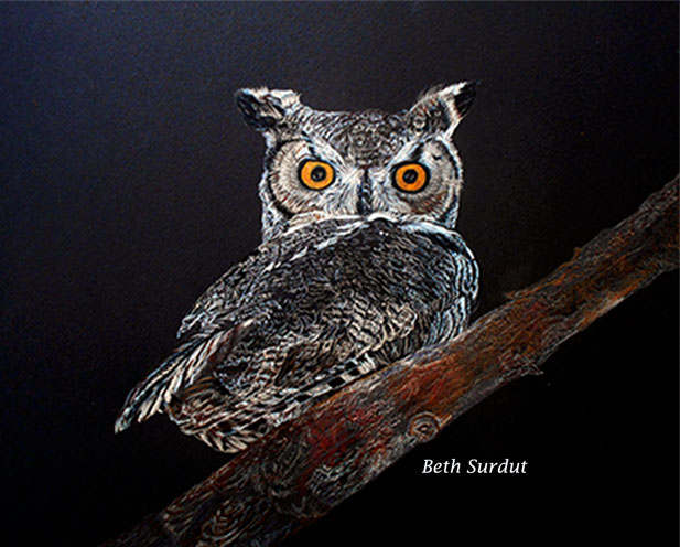 great horned owl beth surdut unsized image