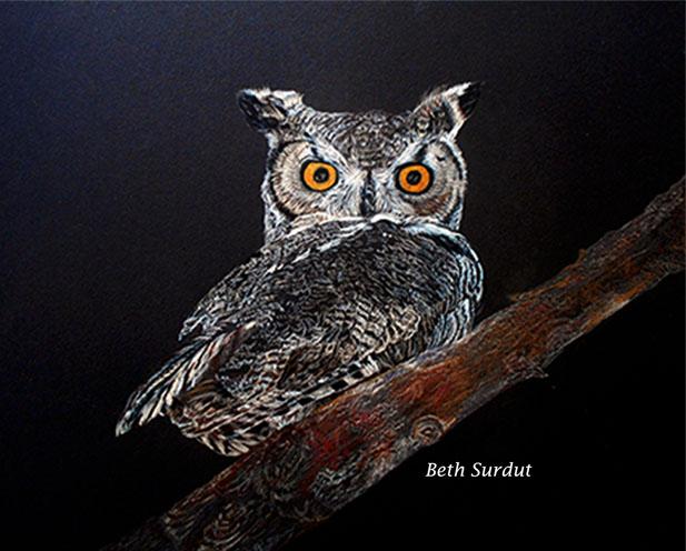 great horned owl beth surdut unsized image