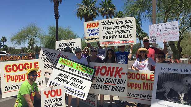 The Puppy Mill Free Arizona group, at the Arizona Mills shopping center in Tempe.