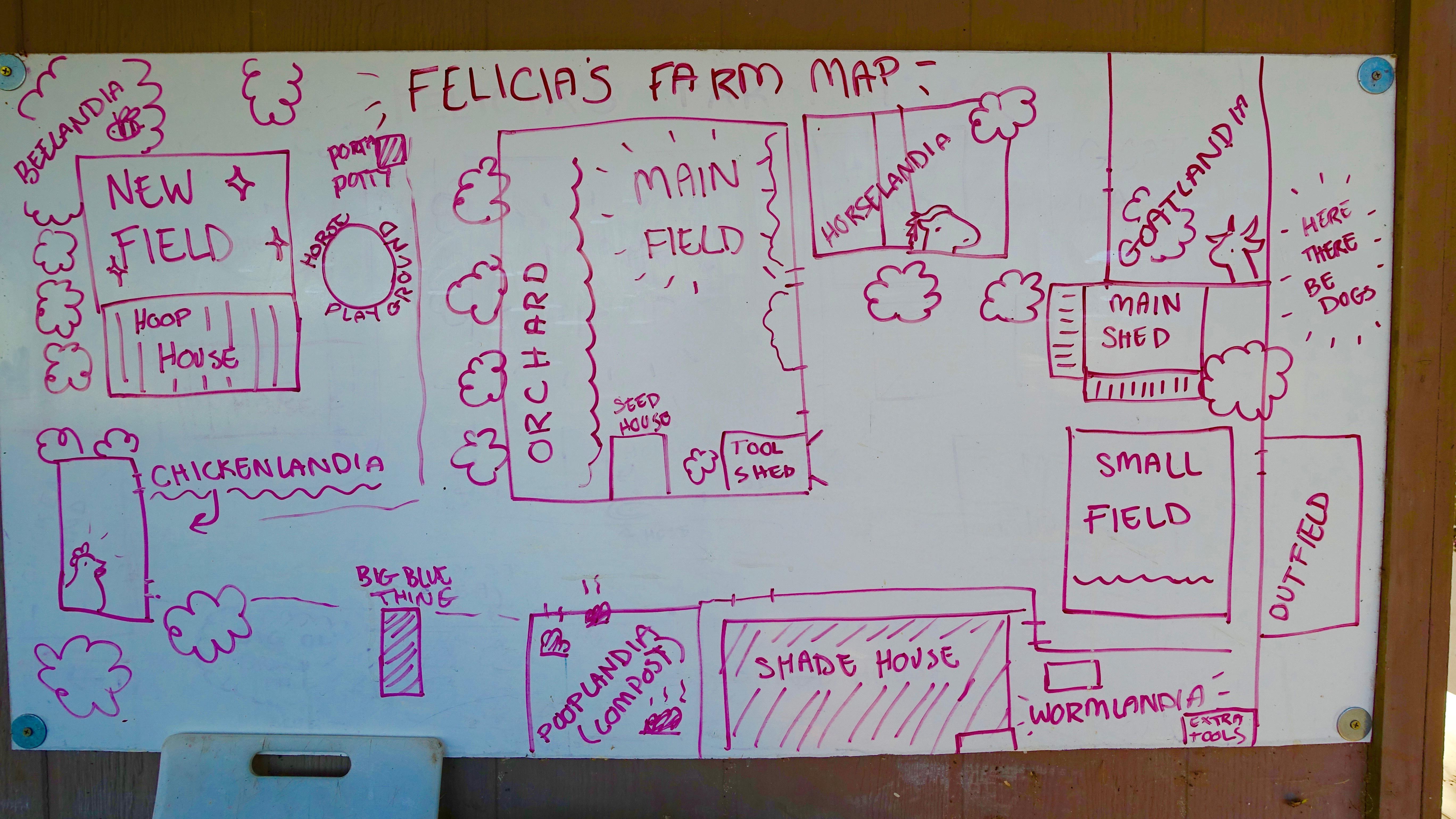 Felicias Farm 11