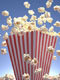 popcorn portrait itny