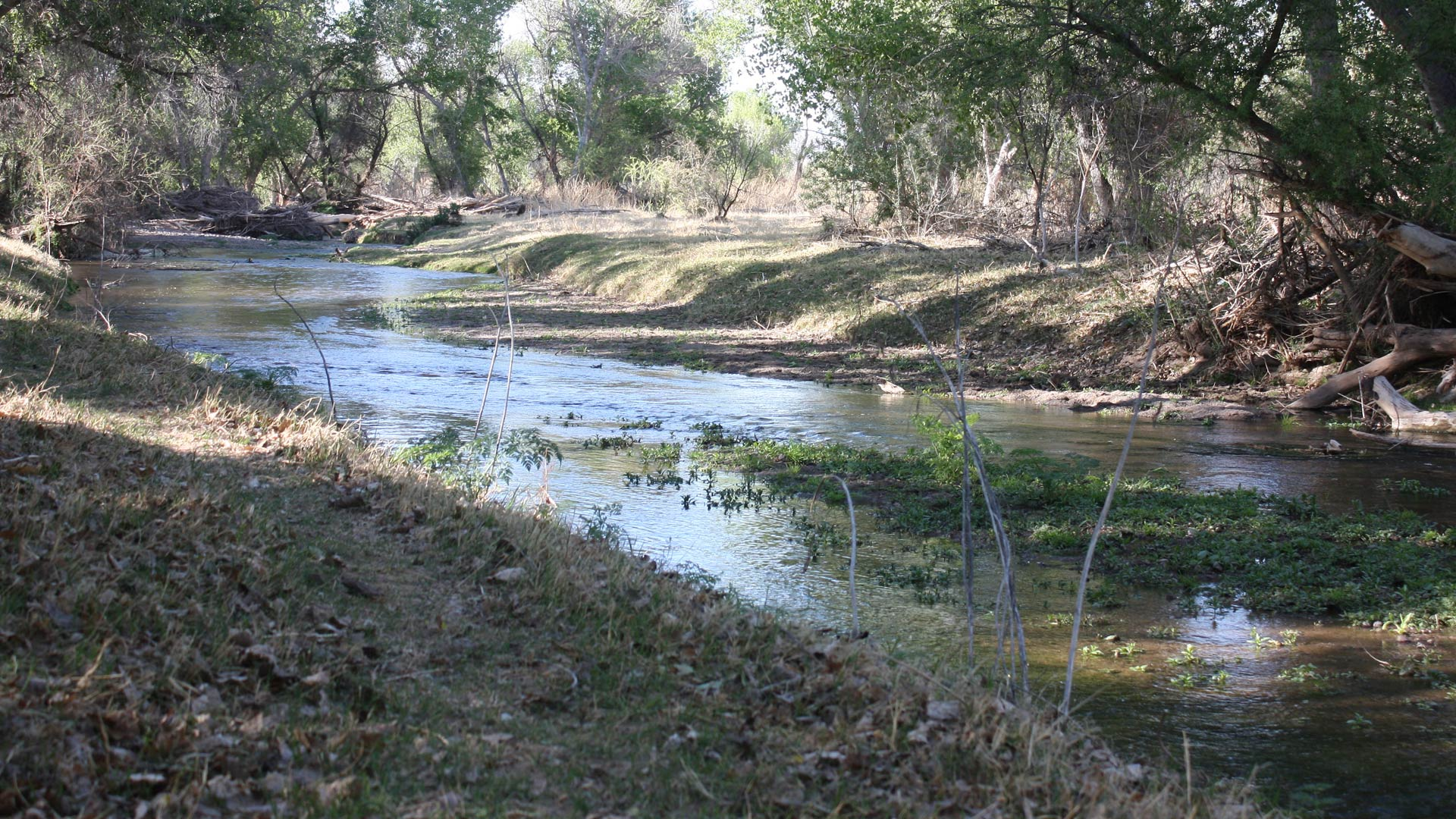 Santa Cruz River Protecting the Border Environment hero