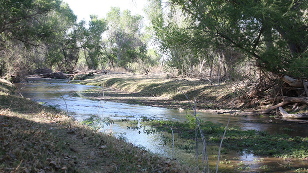 Santa Cruz River Protecting the Border Environment spot