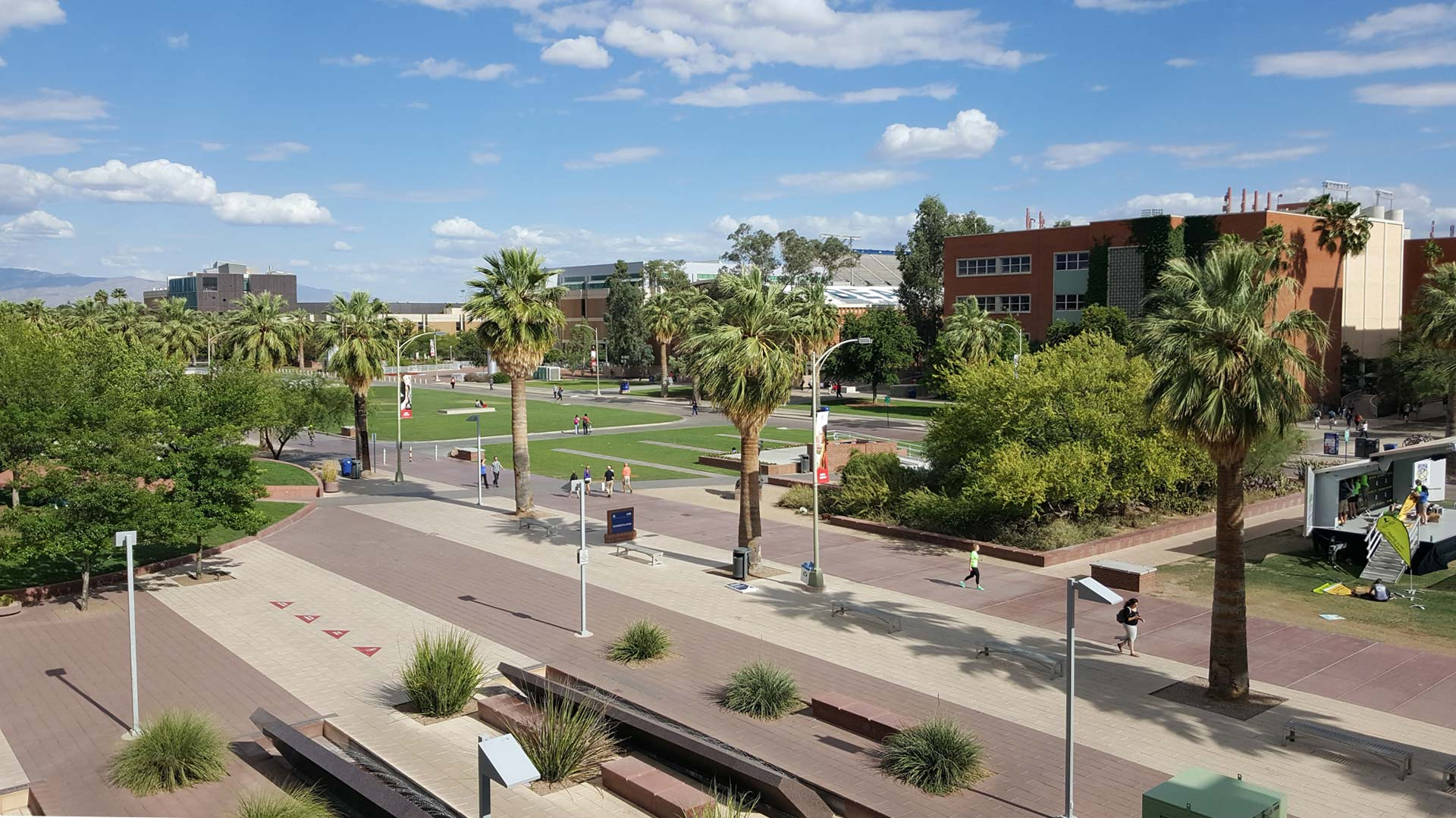 Looking across the mall from the Student Union on the campus of the University of Arizona.