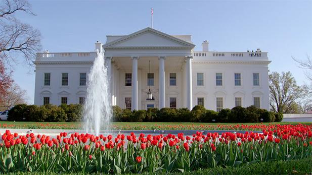 White House south spot