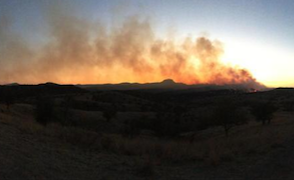 Mule Ridge Fire, near Arivaca, June 6, 2016.